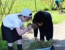 JF & AN gardening